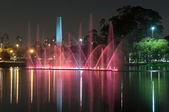 Ibirapuera park, sao paulo , Brazil — Stock Photo