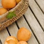 Apricots — Stock Photo #14810207