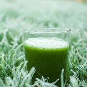 Jus santé détox verte — Photo