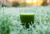 Healthy green detox juice — Fotografia Stock