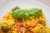 Basmati rice with vegetables and chicken — Foto de Stock