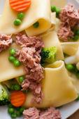 Pasta Cannelloni — Stock Photo
