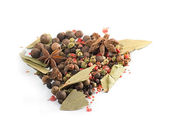 Assortment Spices on the white background — Stock Photo
