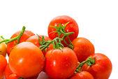 Röda färska tomater närbild på vit bakgrund — Stockfoto