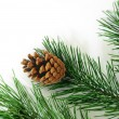Stock Photo: Xmas tree decoration isolated on white