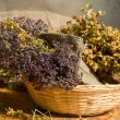 herbal medicine&quot — Stock Photo