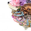 Stock Photo: Hair accessory