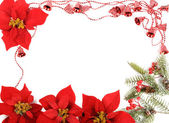 Poinsettias frame — Stock Photo