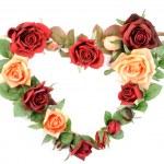 Roses heart — Stock Photo