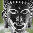 Buddha's Head — Foto Stock