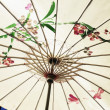 Umbrella — Foto Stock