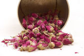 Dried buds of roses, having a good sleep from banks — Stock Photo