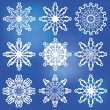 Сollection of snowflakes — Stock Vector
