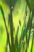 белье текстура, яркий естественный фон — Стоковое фото