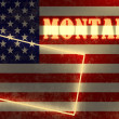 Neon shining outline map of the state on usa national flag backdrop — Stock Photo #47690085