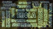 Ebola neon shine text — Stock Photo