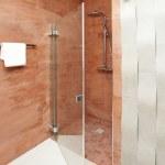 Bathroom shower - interior design — Stock Photo #12685512