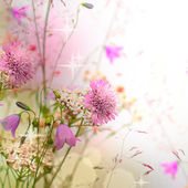 Floral border - blossom, beautiful blurred background — Stock Photo