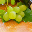 Wine background - wine bottle and grape closeup — Stock Photo #31148381