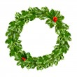 Stock Photo: Christmas wreath of holly - green leaf isolated