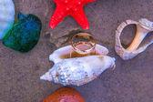 Merine gift. Love and Sea. — Photo