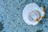 Merine gift. Love and Sea. — Stock Photo