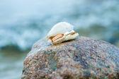 Marine gift. Love and Sea. — Stock Photo