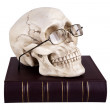 Skull in glasses on book — Stock Photo #44533343