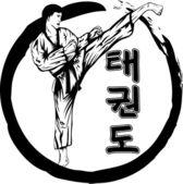Taekwondo — Stock Vector