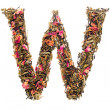 Letter 'W' from herbal tea abc — Stock Photo