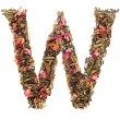 Letter 'W' from herbal teabc — Stock Photo #26561869