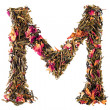 Letter 'M' from herbal tea abc — Foto Stock