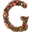 Letter 'G' from herbal tea abc — Stock Photo