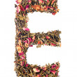Letter 'E' from herbal tea abc — Stock Photo