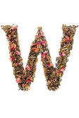Letter 'W' from herbal tea abc — Foto de Stock