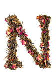 Letter 'N' from herbal tea abc — Foto de Stock