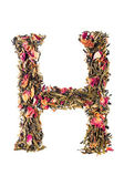 Letter 'H' from herbal tea abc — Stock Photo