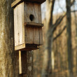 Bird house — Foto de Stock