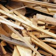 Wood waste — Stock fotografie