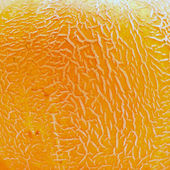 Melon texture — Stock Photo