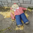 Torn teddy bear -  