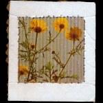 Wild flowers cardboard frame — Stock Photo