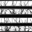 Contact sheet with photos of tree branches — Foto de Stock
