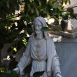 Jesus christ statue among leaves — Stock Photo