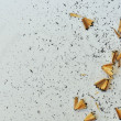 Stock Photo: Shavings from sharpened pencil