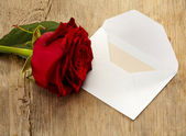 Letter and rose — Stock Photo