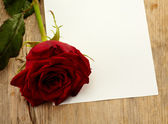 Sheet of paper and rose — Stockfoto