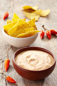 Dip and nachos — Stock Photo