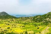 Linze velden op het eiland Lefkas (Griekenland) — Stockfoto