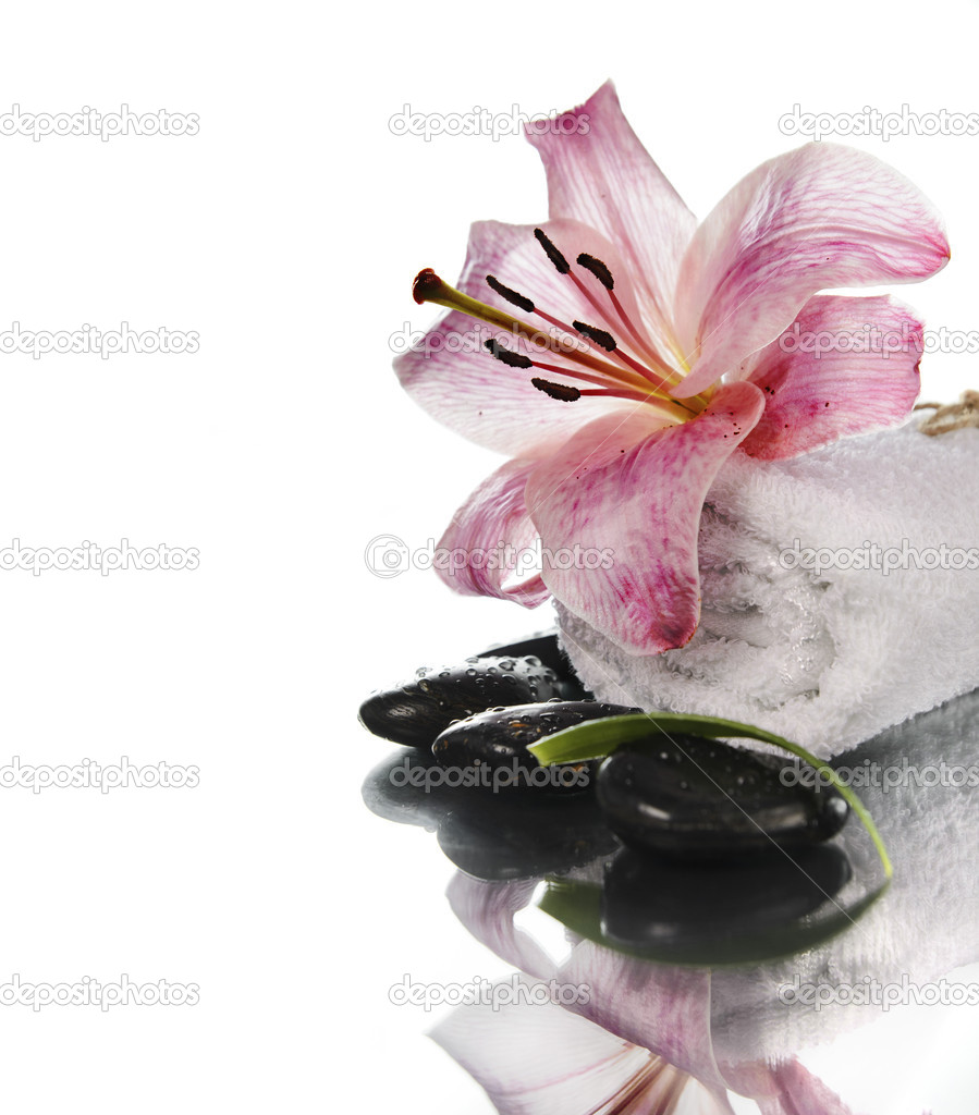 Spa concept with lily flower and zen stones over white  Stock Photo #16508243